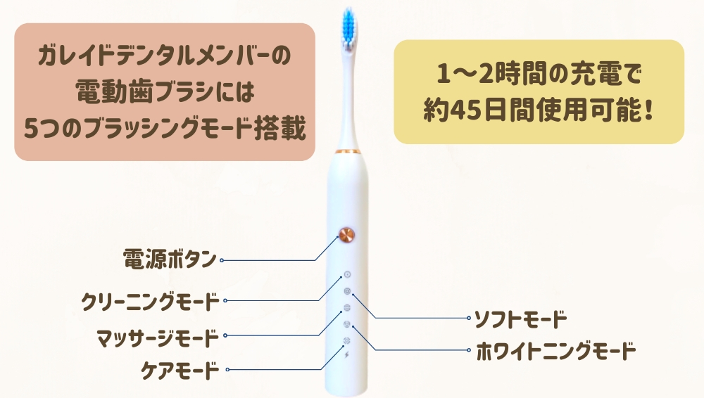 ガレイドデンタルメンバー 電動歯ブラシ 5つのブラッシングモード