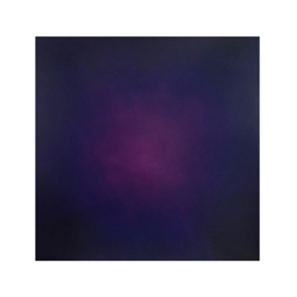 Purple(パープル) yuahku ユハク レザーカラー