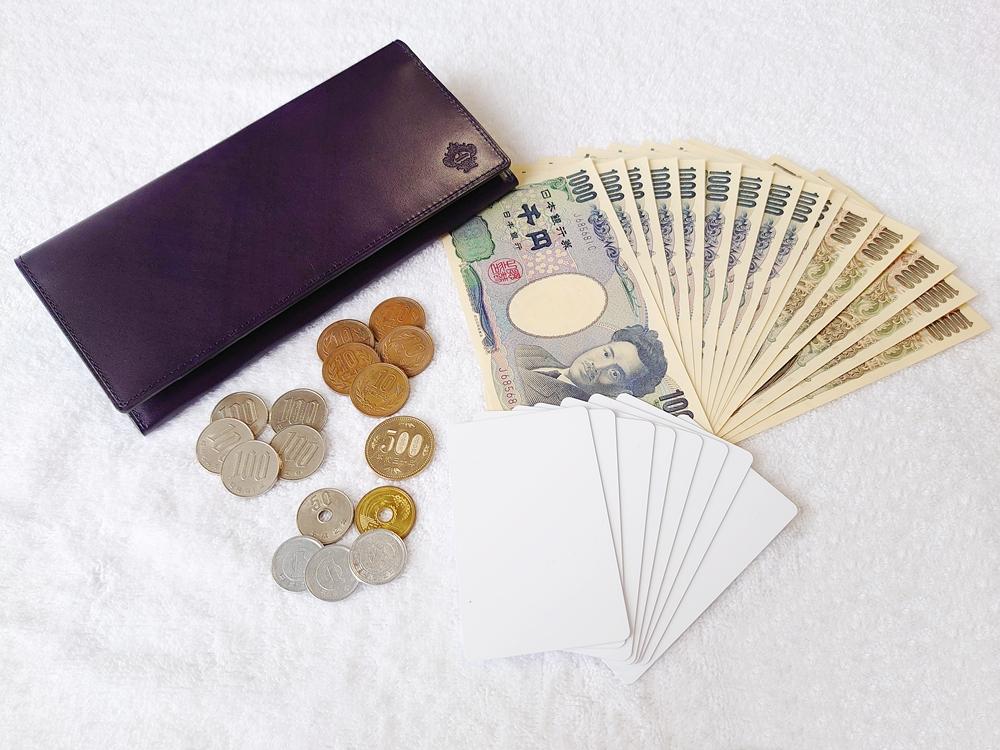 Orobianco(オロビアンコ)ファスナー付き長財布(品番:ORS-012608)ブラック お金とカードを実際に入れた使い心地を確認