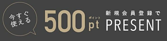 ピエール・ラニエ(Pierre Lannier)新規会員登録 500円分ポイントプレゼント