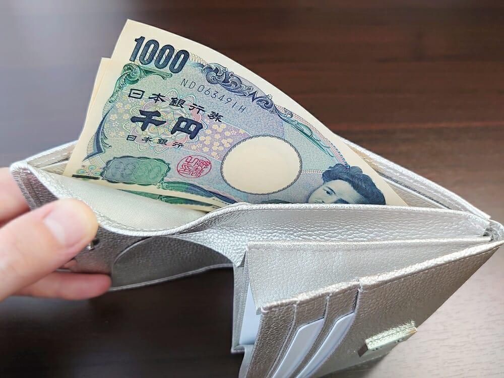 山藤 YAMATOU マルチパーパス サファイアシュリンク SS210500 シーシェルピンク レディース財布 札入れのサイズ感と使い心地3