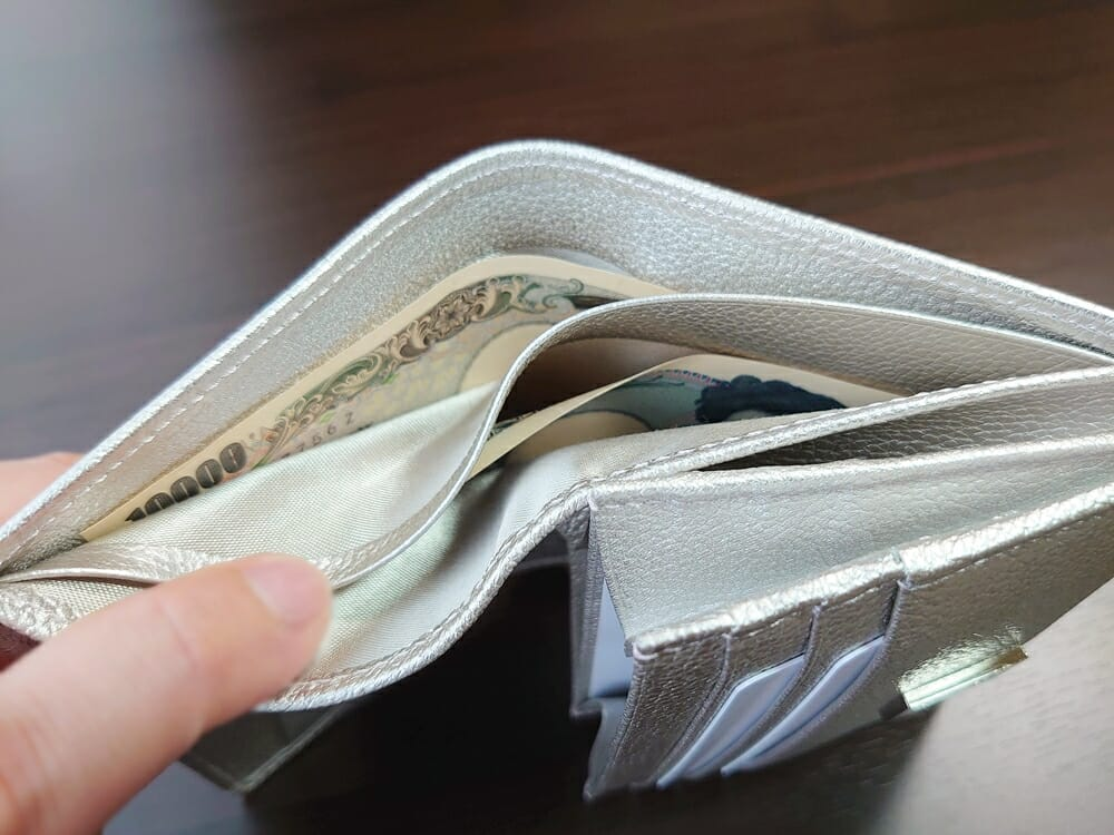山藤 YAMATOU マルチパーパス サファイアシュリンク SS210500 シーシェルピンク レディース財布 札入れのサイズ感と使い心地2